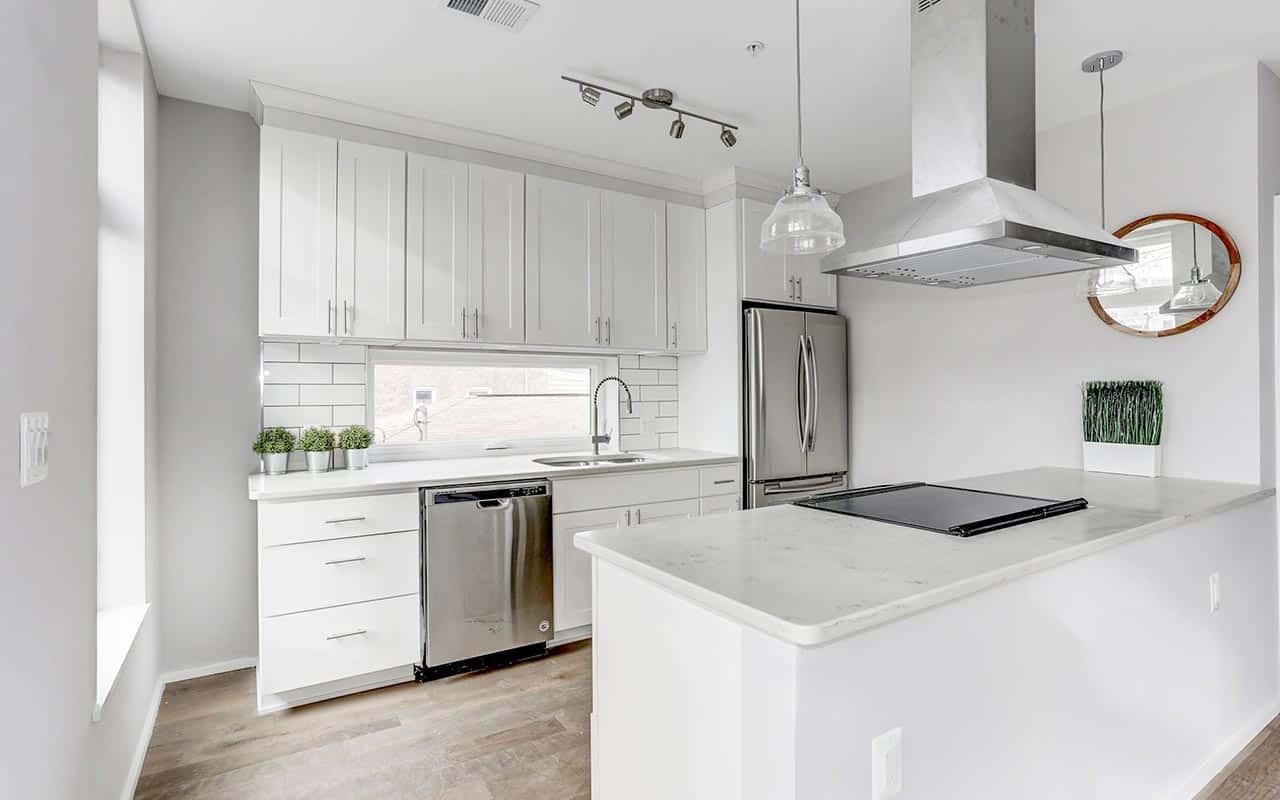 DC Luxury Condominium Kitchens
